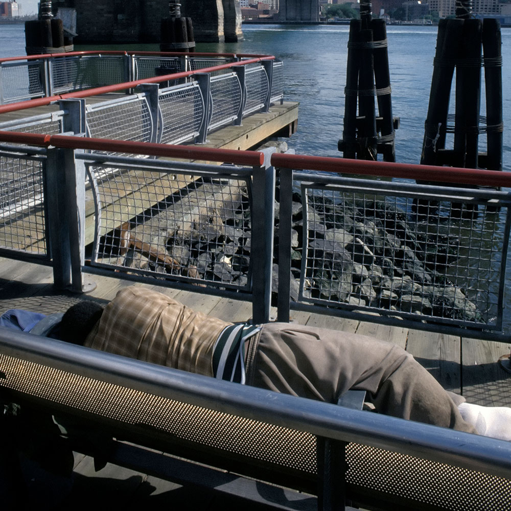 Person Sleeping on Bench by Water